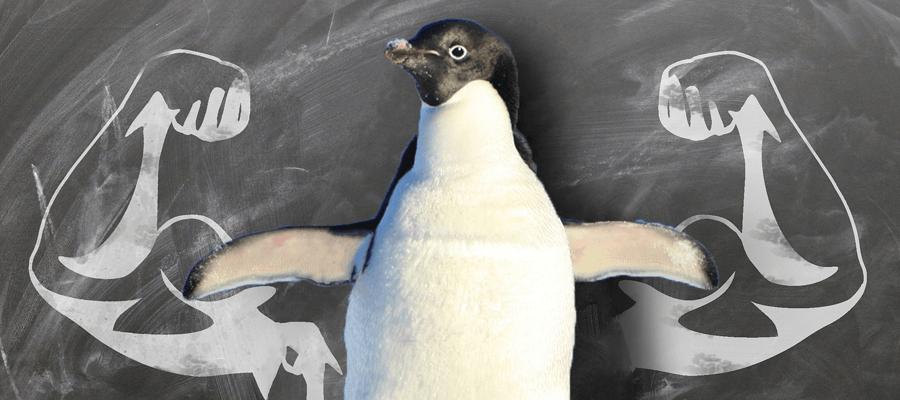 Linux System Hardening: 10-те най-важни съвета за подобряване на сигурността